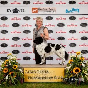 1038- Dogshow Echt 2013 -20130707